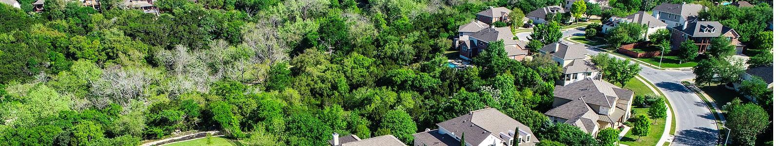 Dallas Tx Pest Control And Extermination Certified Termite Pest Control
